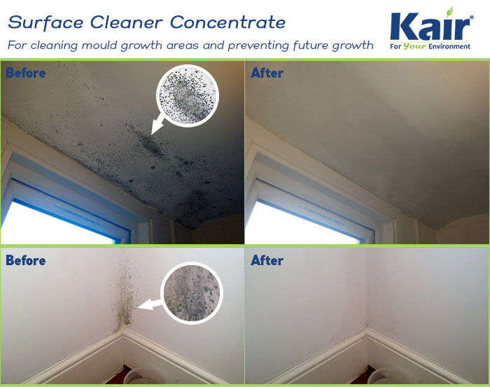 Surface cleaner - Clean black mould off your walls