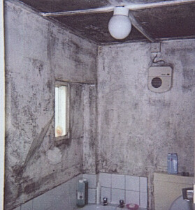 Mould Growth